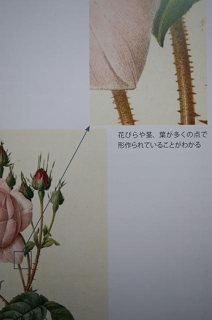 Dsc08269